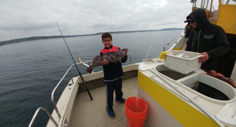 Fish Taxi Deep Sea Sportfishing Charter