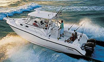 Cape Cod Bay Fishing Charters